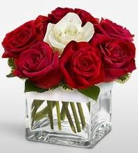 Tek aşkımsın çiçeği 8 kırmızı 1 beyaz gül  Aydın incir çiçek uluslararası çiçek gönderme