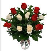 Vazo içerisinde 6 kırmızı 6 beyaz gül  Aydın incir çiçek hediye çiçek yolla