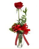 vazo içerisinde 1 adet kırmızı gül  Aydın incir çiçek çiçekçi telefonları