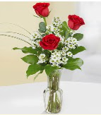 Vazo içerisinde 3 adet kırmızı gül  Aydın incir çiçek çiçek satışı