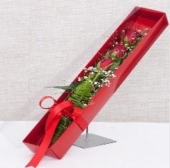 Kutu içerisinde 3 adet kırmızı gül  Aydın incir çiçek online çiçek gönderme sipariş