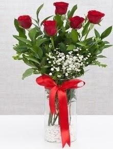 cam vazo içerisinde 5 adet kırmızı gül  Aydın incir çiçek cicekciler , cicek siparisi