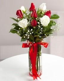 5 kırmızı 4 beyaz gül vazoda  Aydın incir çiçek cicekciler , cicek siparisi