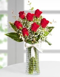 Cam vazoda 7 adet kırmızı gül  Aydın incir çiçek çiçek , çiçekçi , çiçekçilik