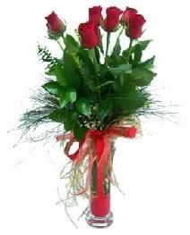 vazo içerisinde 5 kırmızı gül  Aydın incir çiçek güvenli kaliteli hızlı çiçek