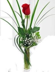 Cam içerisinde 1 kırmızı gül  Aydın incir çiçek çiçek gönderme sitemiz güvenlidir
