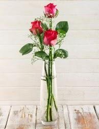 Cam içerisinde 3 kırmızı gül  Aydın incir çiçek çiçek satışı