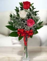 Camda 2 kırmızı 1 beyaz gül  Aydın incir çiçek ucuz çiçek gönder