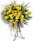 Aydın incir çiçek yurtiçi ve yurtdışı çiçek siparişi  Sari kazablanka Ferforje