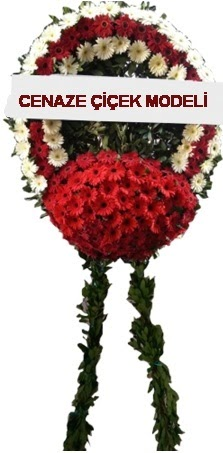 cenaze çelenk çiçeği  Aydın incir çiçek çiçek online çiçek siparişi