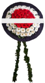mozele çiçeği  Aydın incir çiçek hediye sevgilime hediye çiçek
