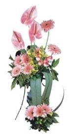 Aydın incir çiçek güvenli kaliteli hızlı çiçek  Pembe Antoryum Harikalar Rüyasi