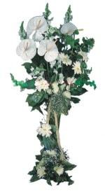 Aydın incir çiçek çiçek mağazası , çiçekçi adresleri  antoryumlarin büyüsü özel