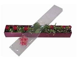 Aydın incir çiçek anneler günü çiçek yolla   6 adet kirmizi gül kutu içinde