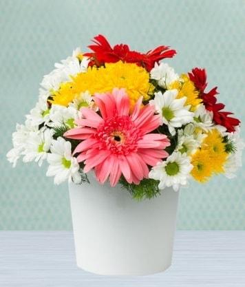Seramik Vazoda Gelbera ve Papatya  Aydın incir çiçek çiçek gönderme