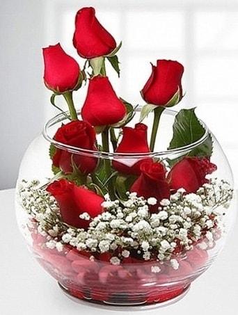 Kırmızı Mutluluk fanusta 9 kırmızı gül  Aydın incir çiçek çiçek siparişi sitesi