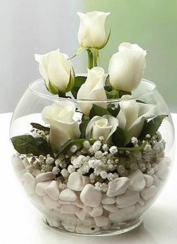 Beyaz Mutluluk 9 beyaz gül fanusta  Aydın incir çiçek çiçek siparişi sitesi