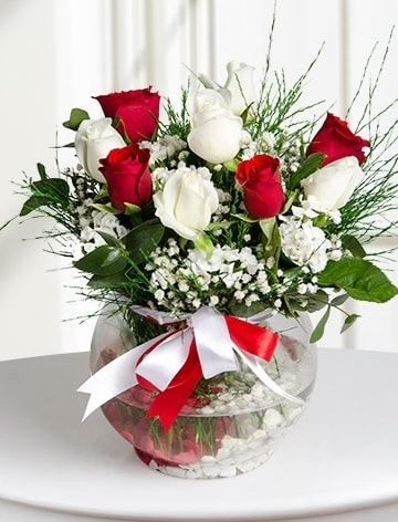 Aşk Küresi  5 beyaz 5 kırmızı gül fanusta  Aydın incir çiçek internetten çiçek satışı