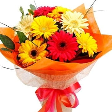 9 adet karışık gerbera buketi  Aydın incir çiçek çiçek , çiçekçi , çiçekçilik