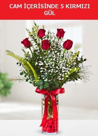 Cam içerisinde 5 adet kırmızı gül  Aydın incir çiçek çiçek siparişi sitesi