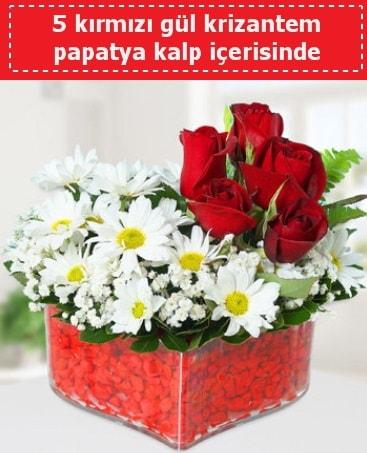 mika kalp içerisinde 5 kırmızı gül papatya  Aydın incir çiçek çiçek gönderme