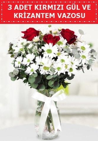 3 kırmızı gül ve camda krizantem çiçekleri  Aydın incir çiçek çiçek gönderme