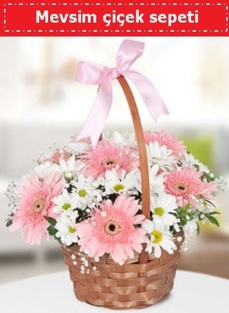 Mevsim kır çiçek sepeti  Aydın incir çiçek çiçek , çiçekçi , çiçekçilik