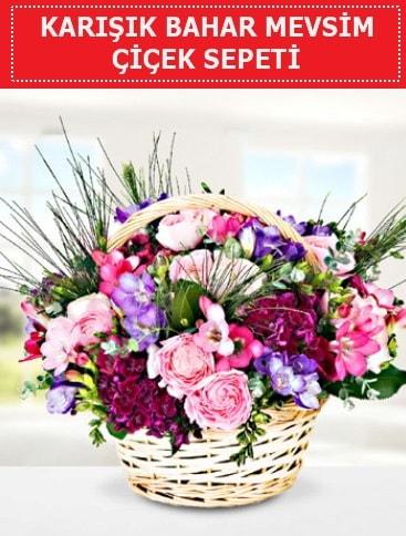 Karışık mevsim bahar çiçekleri  Aydın incir çiçek ucuz çiçek gönder