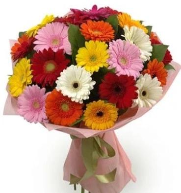 Karışık büyük boy gerbera çiçek buketi  Aydın incir çiçek çiçek satışı